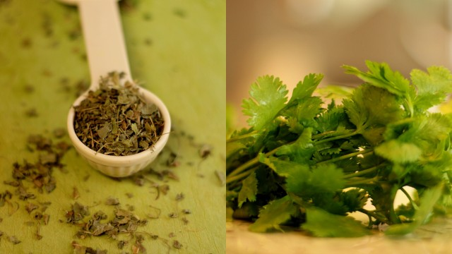 dried-fenugreek-and-fresh-cilantro-herbs